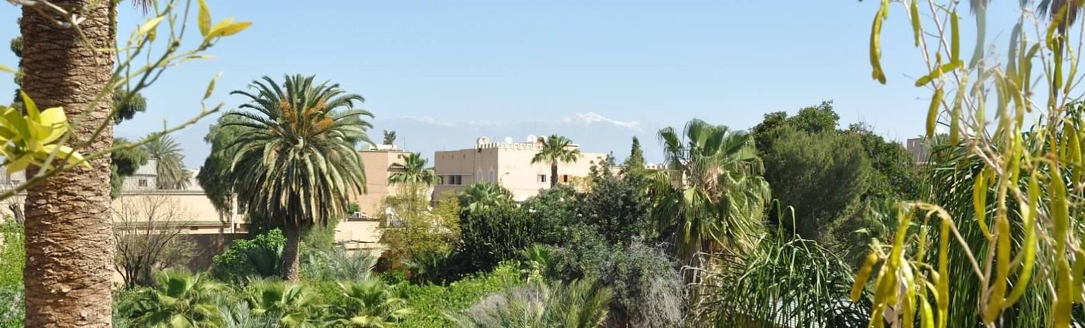 Public Relations - Morocco